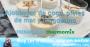 Ajoblanco de coco, langostino y pieles de mar | Thermo &Me